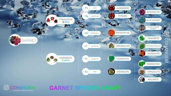 Garner Species Chart 7